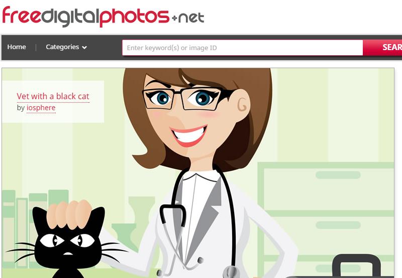 Безкоштовні фотостоки російською мовою — 15 кращих сайтів з фотографіями