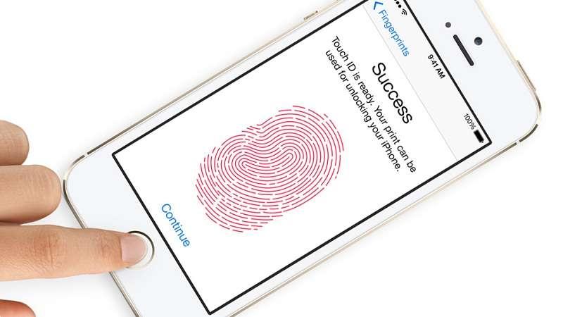 Чим відрізняється iPhone (айфон) 5 від 5s — основні відмінності