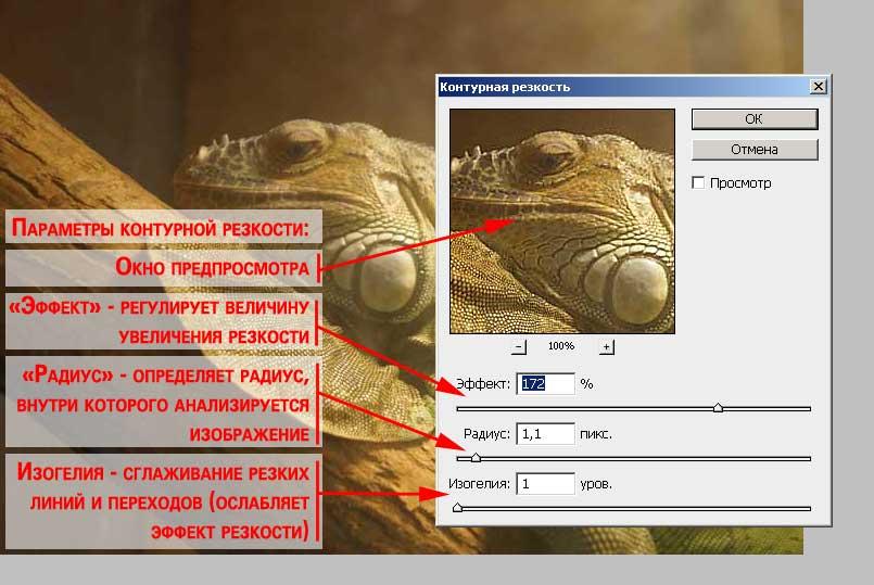 Рисунок 6: установки фильтра фотошоп