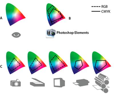 Рисунок 1: Иллюстрация цветовых пространств от Adobe